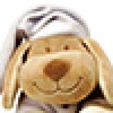 Dog Lavander